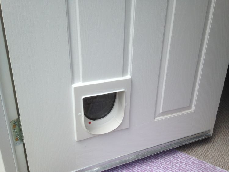 A Quick Way To Solve The Cat Flap Problem – Follow these 4 Steps